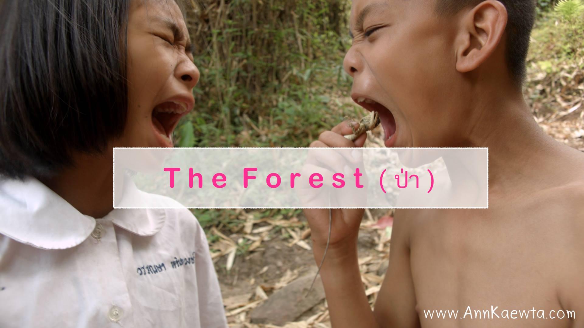 Photo: www.facebook.com/theforestthefilm